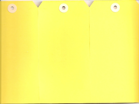 #4 13 POINT YELLOW GANGS OF 4 TAGS (250 SHEETS)