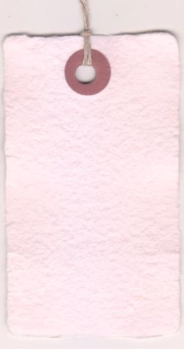 23025A - 3-3/4X1-7/8 HEMP PAPER TAG RASPBERRY 5s